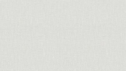 Vinyltapete weiß Vintage Uni Meistervlies 2020 116