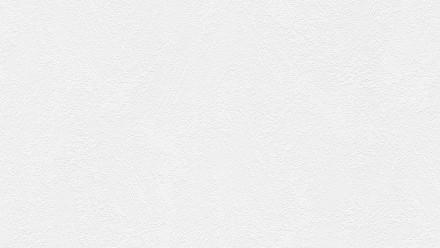 Vinyltapete weiß Modern Uni Styleguide Natürlich 2021 918