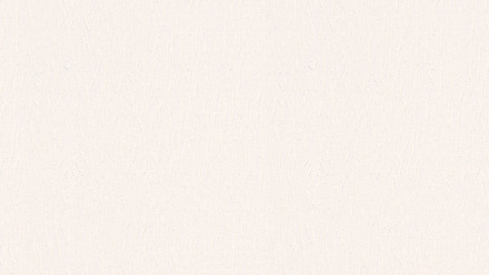 Papiertapete weiß Klassisch Streifen Uni Styleguide Klassisch 2021 875