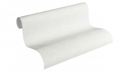 Vinyltapete Beton Concrete & More A.S. Création Unifarben Betonoptik Grau Weiß 641