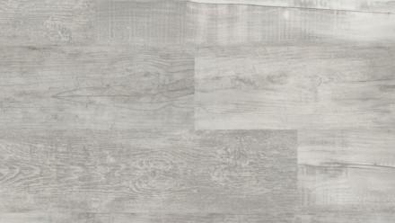 KWG Klick-Vinyl - Antigua Infinity Hydrotec Silberpinie