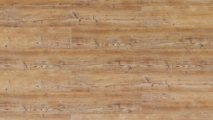 Wicanders Klick-Vinyl - Wood Hydrocork Arcadian Rye Pine, synchrongeprägt