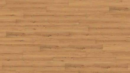 Wicanders Korkboden - Wood Essence Golden Prime Oak 11,5mm Kork - NPC versiegelt