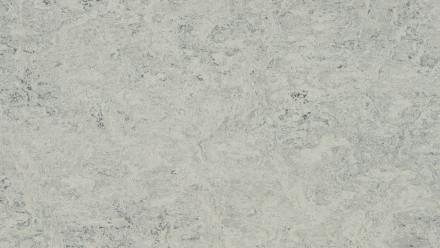 planeo Linoleum Real - mist grey 3032 2.5