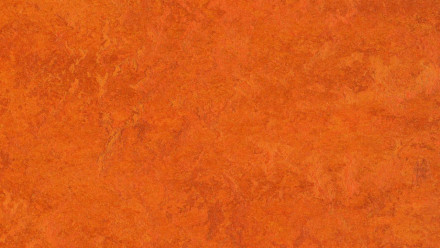 planeo Linoleum Fresco - Kyoto 3126 2.5