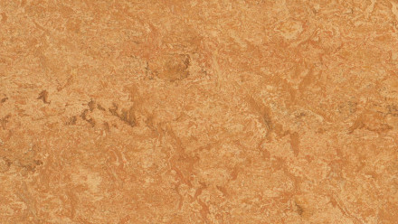 planeo Linoleum Real - Sahara 3174 2.0