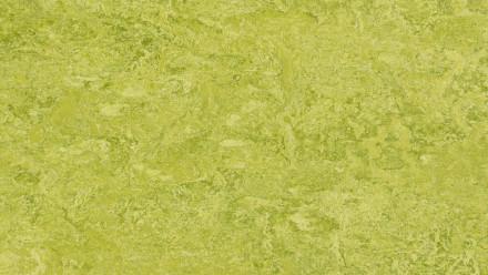 planeo Linoleum Real - chartreuse 3224 2.5