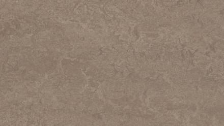 planeo Linoleum Fresco - shrike 3246