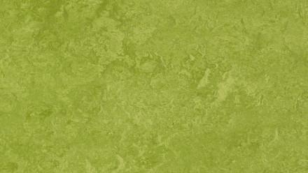 planeo Linoleum Fresco - green 3247
