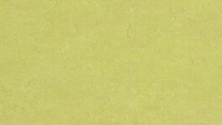 planeo Linoleum Fresco - spring buds 3885