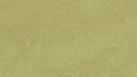 planeo Linoleum Fresco - avocado 3265