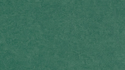 planeo Linoleum Fresco - hunter green 3271