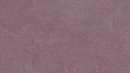 planeo Linoleum Real - plum 3272