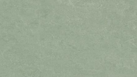 planeo Linoleum Fresco - sage 3891