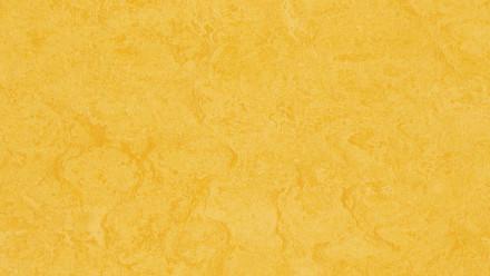 planeo Linoleum Linoklick - Lemon zest  - 333251