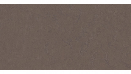 planeo Linoleum Linoklick - Delta lace 60x30cm - 633568