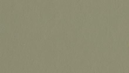 planeo Linoleum Walton - rosemary green 3355
