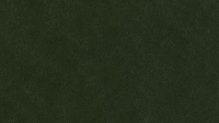 planeo Linoleum Walton - bottle green 3359