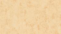 Vinyltapete orange Modern Uni Used Look 071