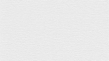 Vinyltapete weiß Modern Uni Simply White 355