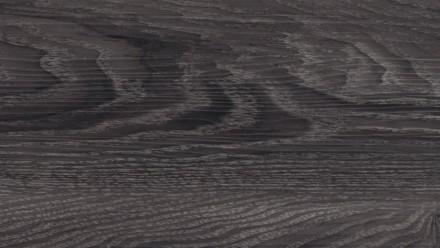 planeo at home - Chêne noir de tremble