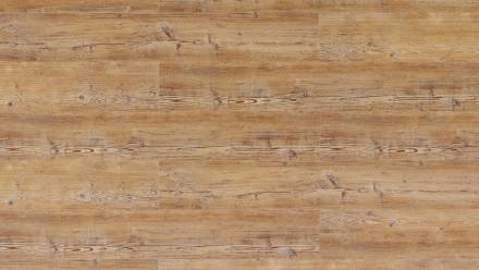 Wicanders Click-Vinyl - Pin d'Arcadie résistant au bois