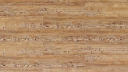 Wicanders Click-Vinyl - Hydrocork de bois Pin d'Arcadie, gaufrage synchronisé