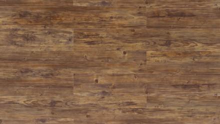 Wicanders Click-Vinyl - Hydrocork de bois Century Fawn Pine, gaufrage synchronisé