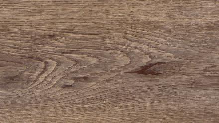 Wicanders Click-Vinyl - Chêne clair d'aube en hydrocork