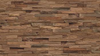 planeo WoodWall - Teckwood Classic Sumatra