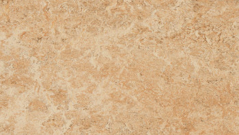planeo Linoleum Real - coquille 3075 2.0