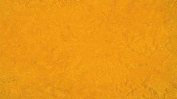planeo Linoleum Fresco - golden sunset 3125 2.0