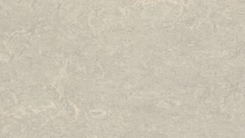 planeo Linoleum Real - béton 3136 2.0