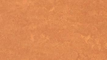 planeo Linoleum Fresco - Désert africain 3825 2.0