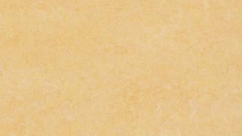 planeo Linoleum Fresco - maïs naturel 3846 2.0