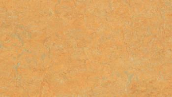 planeo Linoleum Real - safran doré 3847 2.0